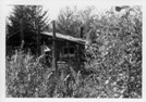 Image - Photograph of the trapper's cabin