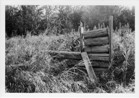 Image - Photograph of the remains of an old log house on the Grouard Trail