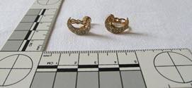 Image - Earrings