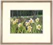 Image - Needlework