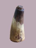 Image - Horn