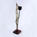 Image - tulipe